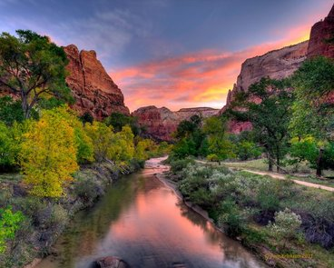 Dr. Bhupendra C. K. Patel MD photograph of the Zion National Park