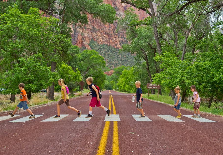 "Dr. Bhupendra C. K. Patel MD, of the English Surgeon website, ""Abbey Road"" crossing in Zions National Park"